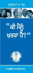 Kidney Foundation - Brochure (Punjabi)